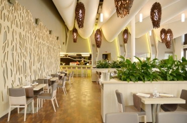 Brno restaurant acoustic ceiling